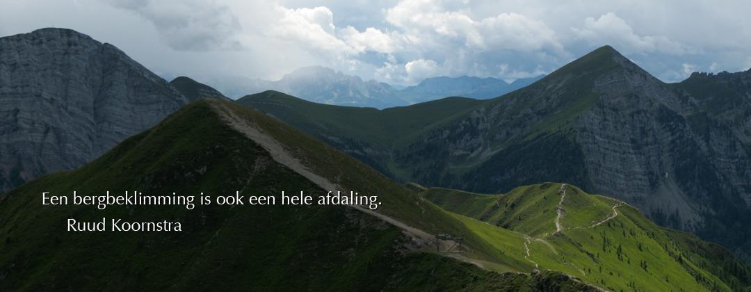 www.mindfulprofessionals.nl