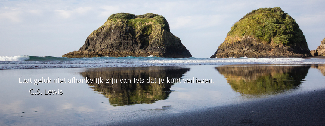 www.mindfulprofessionals.nl